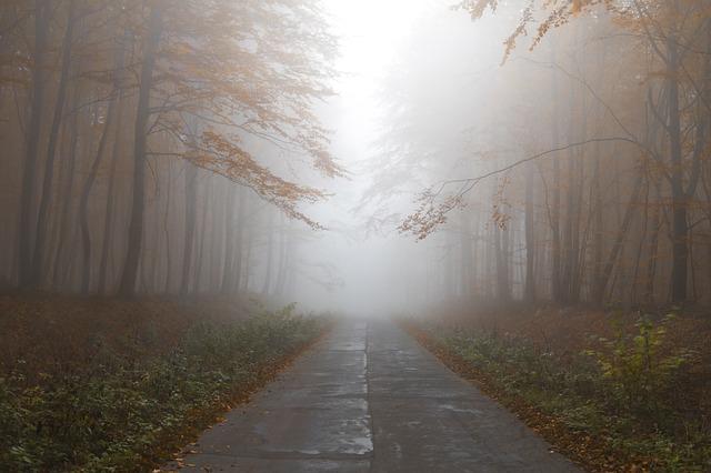 autumn-1839969_640